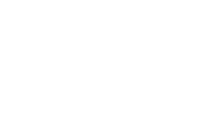 Welsh Bros. logo